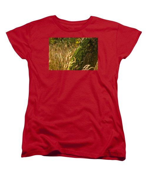 Fields Of Gold Women's T-Shirt (Standard Cut) by Daniel Precht