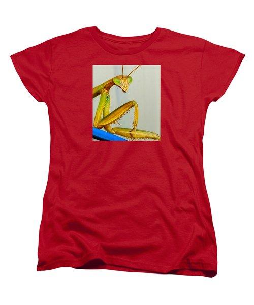 Fierce Lady Women's T-Shirt (Standard Cut)