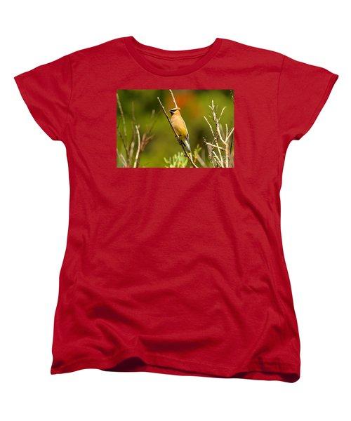 Fishercap Cedar Waxwing Women's T-Shirt (Standard Cut) by Adam Jewell