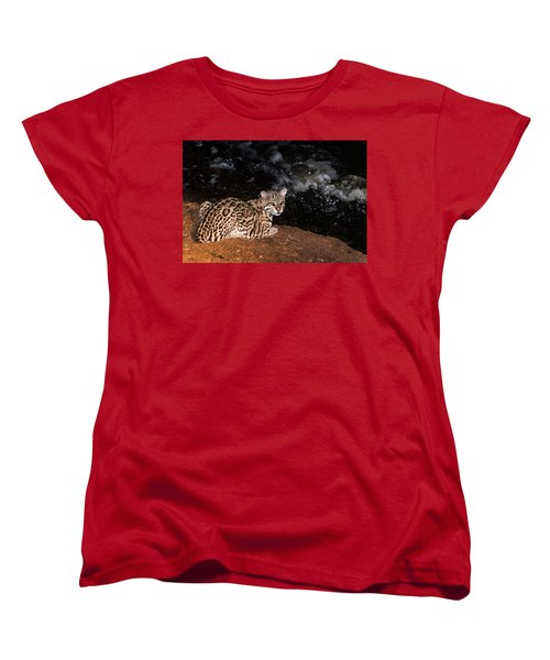 Fishing In The Stream Women's T-Shirt (Standard Cut) by Alex Lapidus