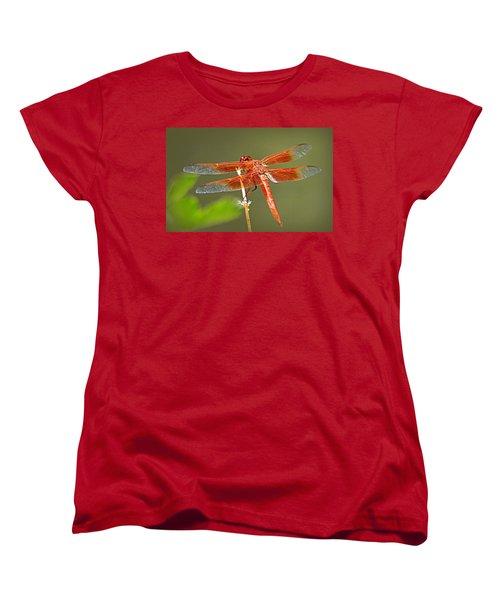 Women's T-Shirt (Standard Cut) featuring the photograph Flame Skimmer by AJ Schibig