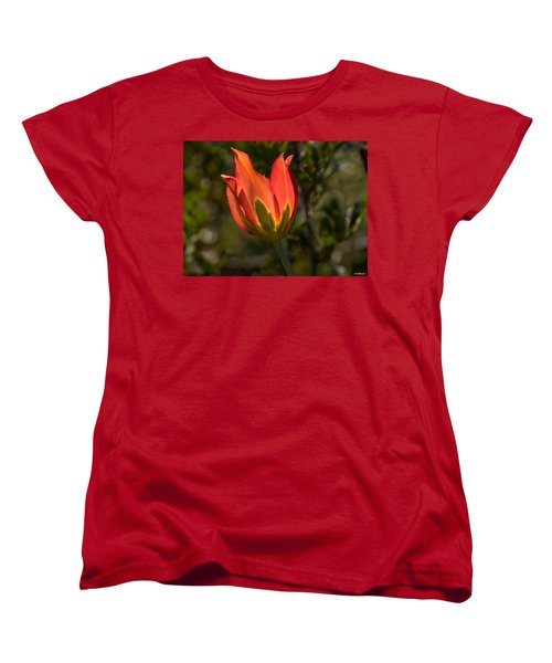 Flaming Beauyy Women's T-Shirt (Standard Cut) by Uri Baruch