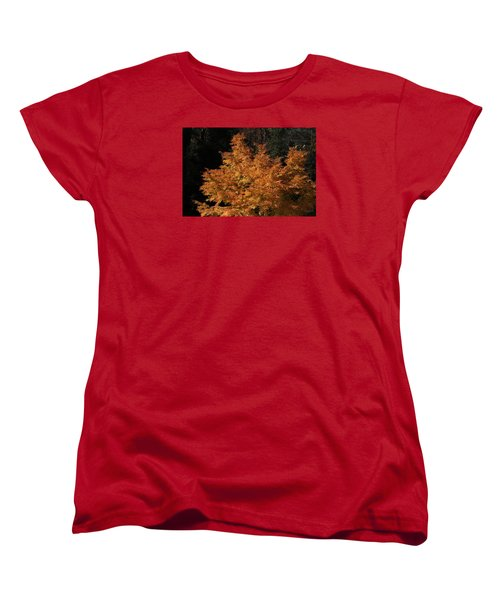 Flaming Tree Brush Women's T-Shirt (Standard Cut) by Deborah  Crew-Johnson