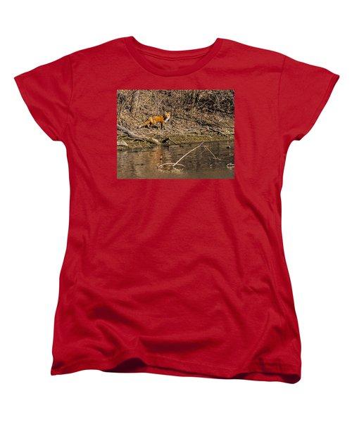 Women's T-Shirt (Standard Cut) featuring the photograph Fox Walk by Edward Peterson