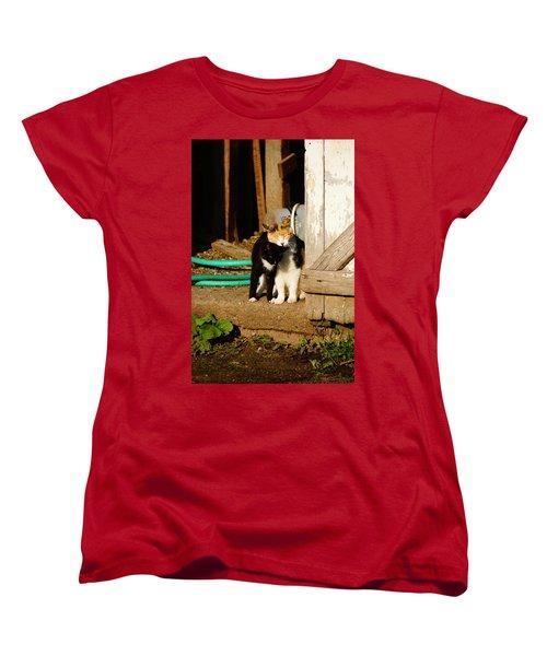 Friends Women's T-Shirt (Standard Cut) by Steven Clipperton