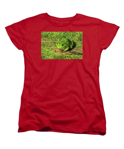 Frog And Duck Weed Women's T-Shirt (Standard Cut) by Edward Peterson
