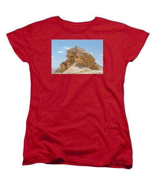 Frog Rock Women's T-Shirt (Standard Cut) by Arik Baltinester