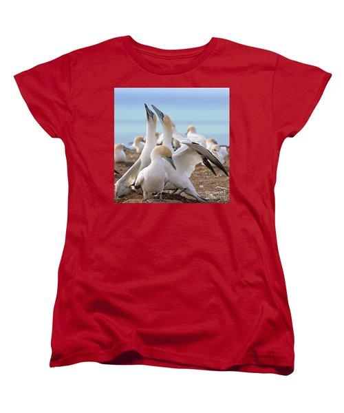 Women's T-Shirt (Standard Cut) featuring the photograph Gannets by Werner Padarin
