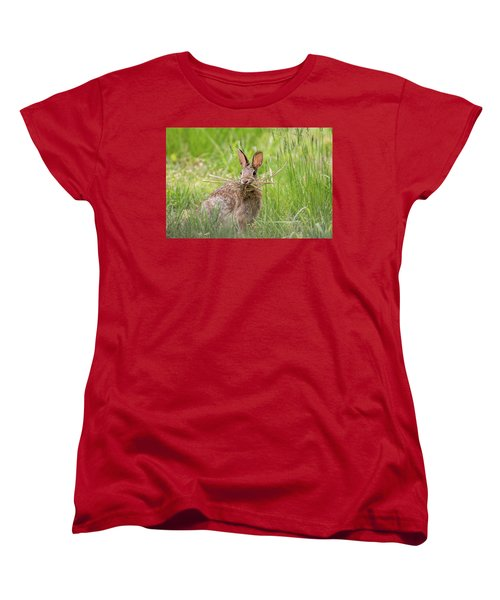 Gathering Rabbit Women's T-Shirt (Standard Cut) by Terry DeLuco