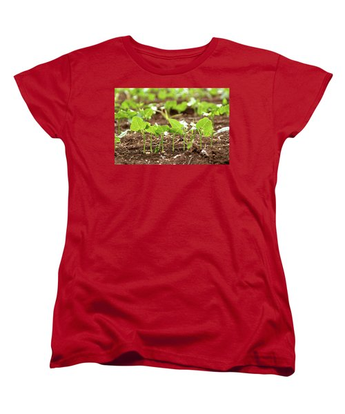 Women's T-Shirt (Standard Cut) featuring the photograph New Sprouts In The Promised Land by Yoel Koskas