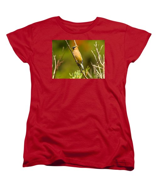 Glacier Cedar Waxwing Women's T-Shirt (Standard Cut) by Adam Jewell