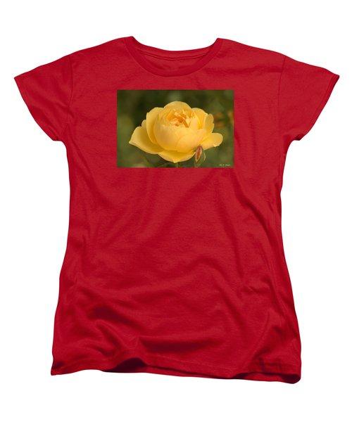 Golden Breath Women's T-Shirt (Standard Cut) by Amy Gallagher