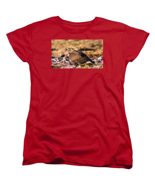 Golden Eagle's Back Women's T-Shirt (Standard Cut) by Torbjorn Swenelius