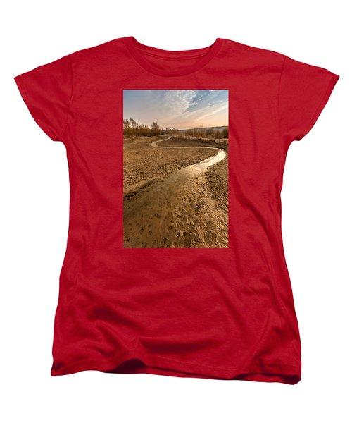 Women's T-Shirt (Standard Cut) featuring the photograph Golden Stream by Davorin Mance