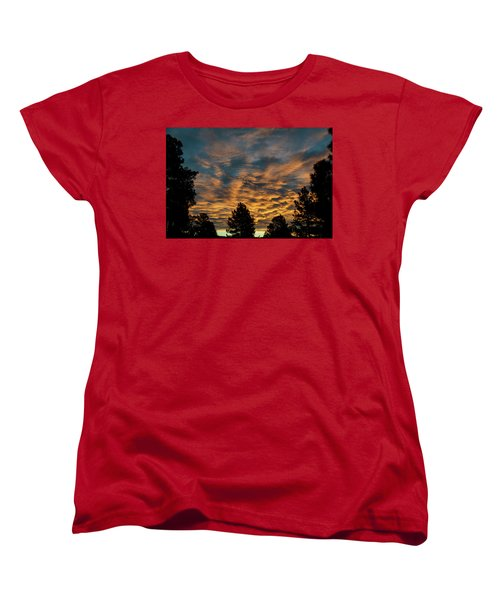 Golden Winter Morning Women's T-Shirt (Standard Cut) by Jason Coward