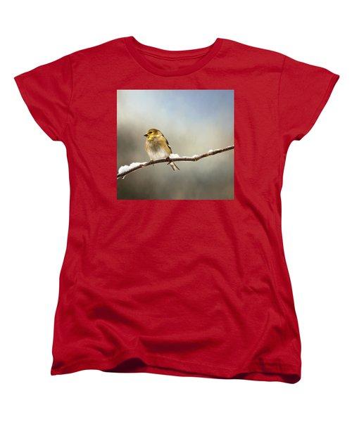 Goldfinch After A Spring Snow Storm Women's T-Shirt (Standard Cut) by Betty Pauwels