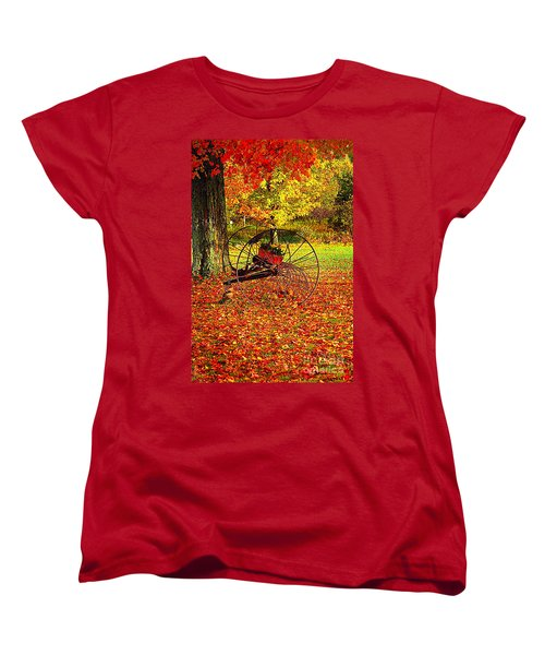 Gone With The Wind Women's T-Shirt (Standard Cut) by Diane E Berry