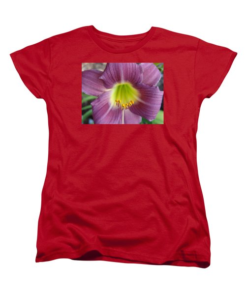 Women's T-Shirt (Standard Cut) featuring the photograph Grape Purple Daylilies  by Rebecca Overton