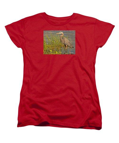 Great Blue At The Park Women's T-Shirt (Standard Cut)
