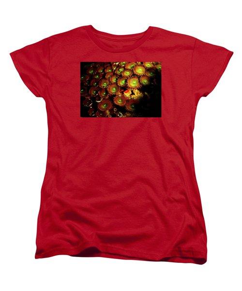 Women's T-Shirt (Standard Cut) featuring the photograph Green Button Polyps by Anthony Jones