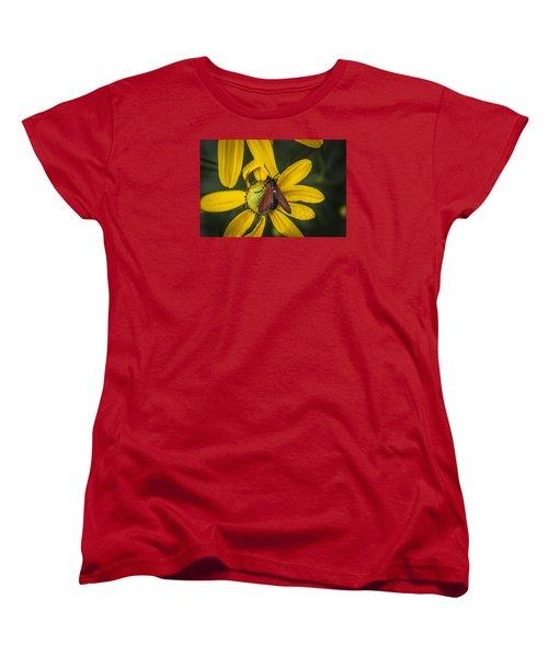 Green Headed Coneflower Moth Women's T-Shirt (Standard Cut) by Rich Franco