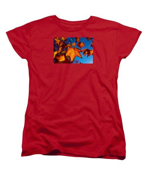Hanging On Women's T-Shirt (Standard Cut) by Derek Dean