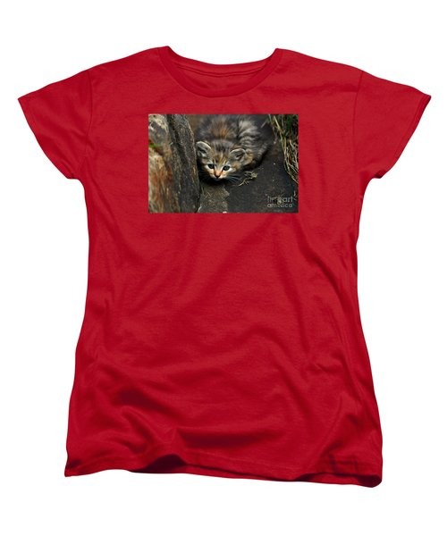 Hello Little Kitty Women's T-Shirt (Standard Cut) by Eric Liller