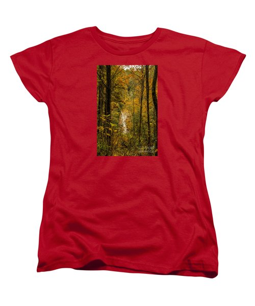 Women's T-Shirt (Standard Cut) featuring the photograph Helton Falls Through The Leaves by Barbara Bowen