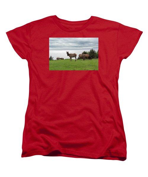 Herd Of Elk At Ecola State Park Women's T-Shirt (Standard Fit)