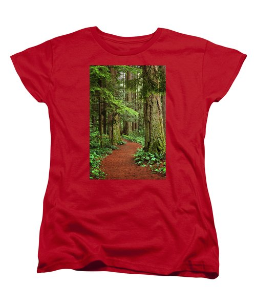 Heritage Forest 2 Women's T-Shirt (Standard Cut) by Randy Hall