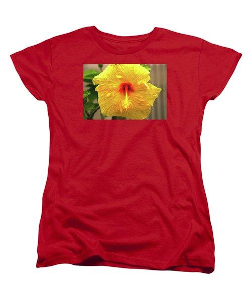 Hibiscus Flower After The Rain Women's T-Shirt (Standard Cut) by Michael Courtney