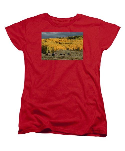 Hills Afire Women's T-Shirt (Standard Cut) by Dana Sohr