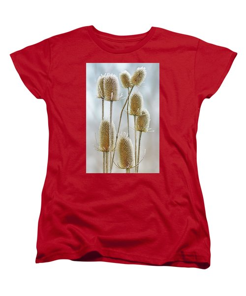 Hoar Frost - Wild Teasel Women's T-Shirt (Standard Cut) by Nikolyn McDonald