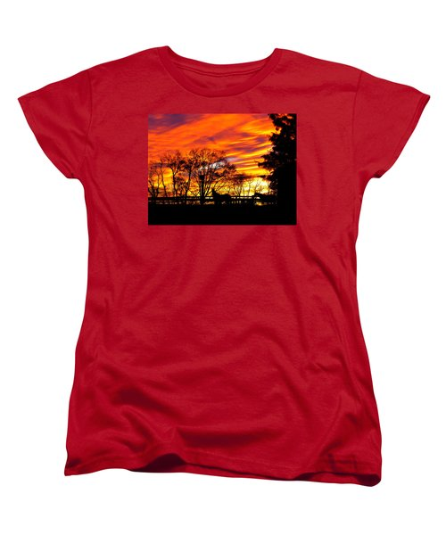 Horses And The Sky Women's T-Shirt (Standard Cut) by Donald C Morgan