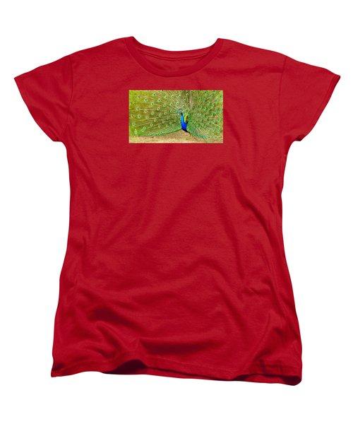 Indian Peacock Women's T-Shirt (Standard Cut) by Dan Miller