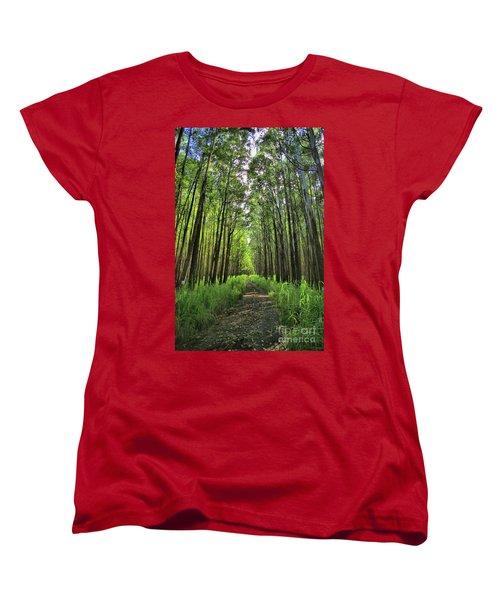 Women's T-Shirt (Standard Cut) featuring the photograph Into The Forest by DJ Florek