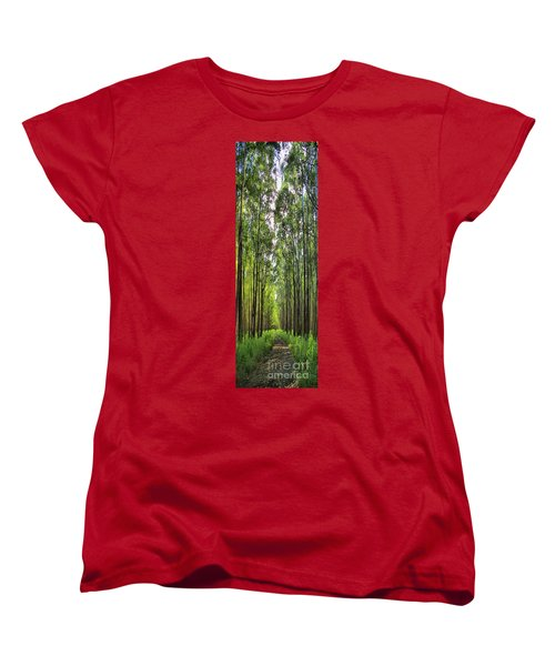 Women's T-Shirt (Standard Cut) featuring the photograph Into The Forest I Go by DJ Florek