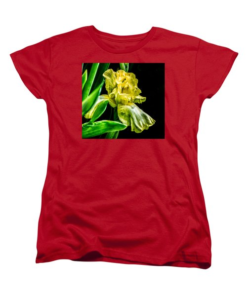 Iris In Bloom Women's T-Shirt (Standard Cut)
