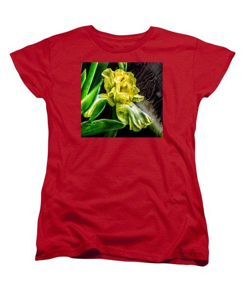 Iris In Bloom Two Women's T-Shirt (Standard Cut)