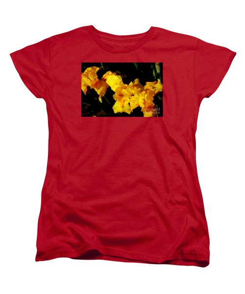 Irises Women's T-Shirt (Standard Cut) by David Blank