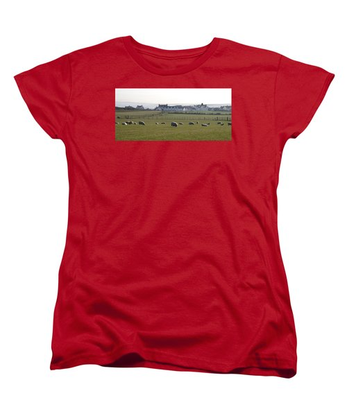 Irish Sheep Farm Women's T-Shirt (Standard Cut) by Henri Irizarri