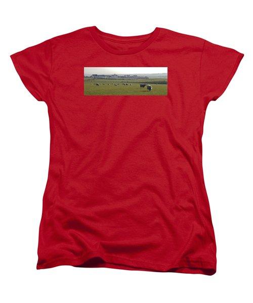 Irish Sheep Farm I Women's T-Shirt (Standard Cut) by Henri Irizarri
