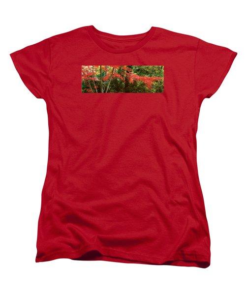 Japanese Maple Women's T-Shirt (Standard Cut) by John Pagliuca