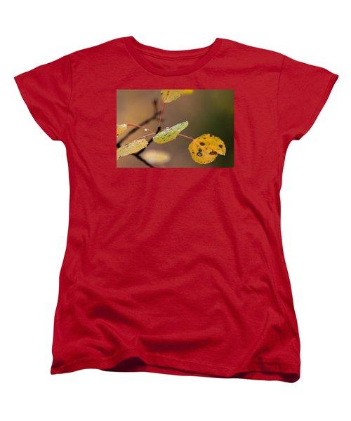 Jewels Of Autumn Women's T-Shirt (Standard Cut) by Jim Garrison