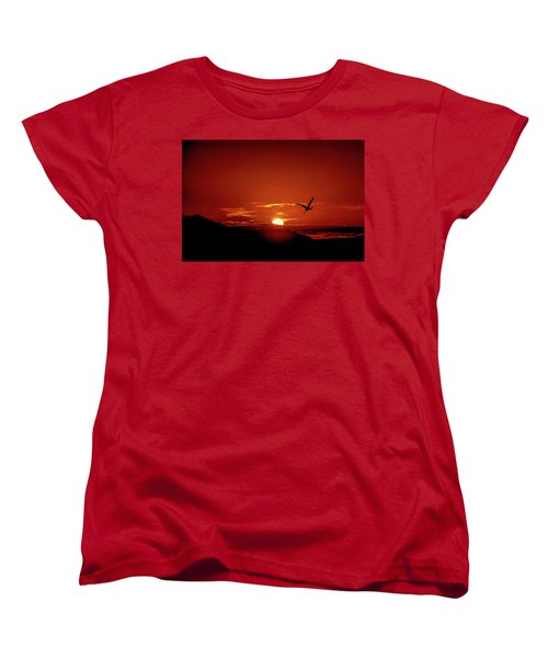 Journey Home Women's T-Shirt (Standard Cut) by Mark Dunton