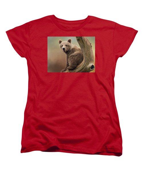 Juvenile Brown Bear - 365-5 Women's T-Shirt (Standard Cut) by Inge Riis McDonald