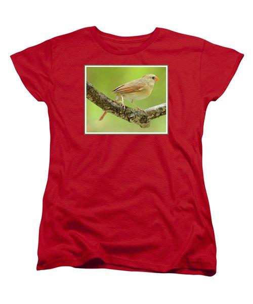 Juvenile, Female Cardinal, Animal Portrait Women's T-Shirt (Standard Cut) by A Gurmankin