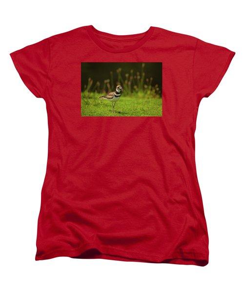Killdeer Women's T-Shirt (Standard Cut) by Karol Livote