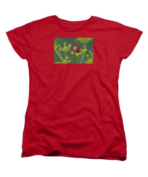 Ladybug In Red Women's T-Shirt (Standard Cut) by Janet Rockburn