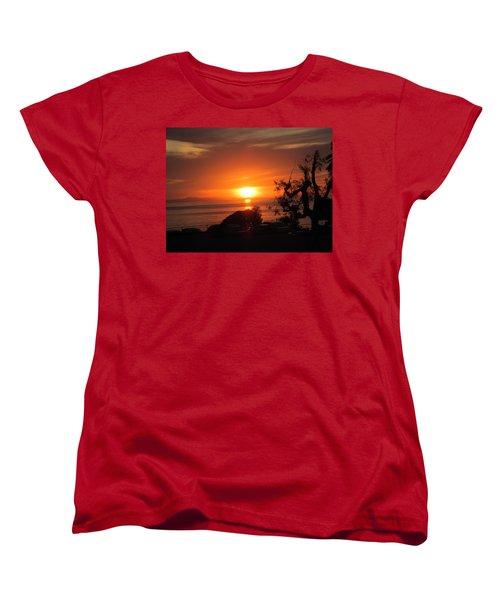Laguna Beach California Feb 2016 Women's T-Shirt (Standard Cut) by Dan Twyman